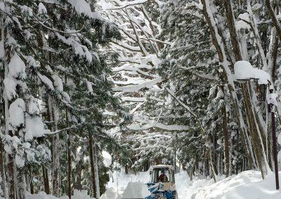 Déblaiement de la neige | Entretien hivernal