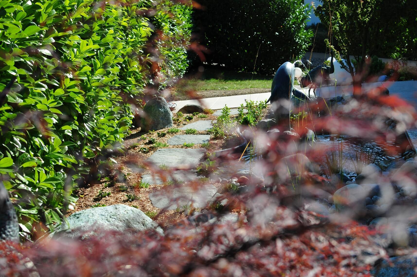 michael ellig étang bassin eau cours riviere paysagiste statues aellig paysages (4)