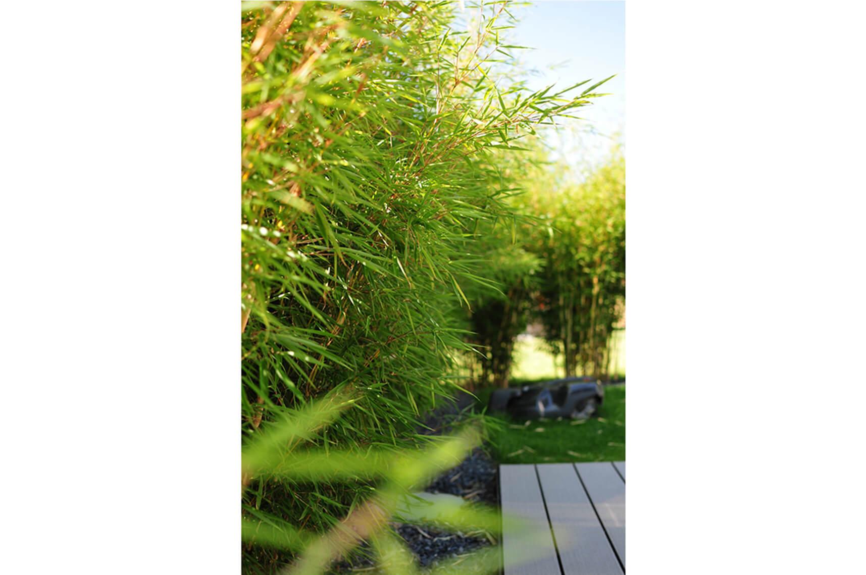 paysagiste aménagement terrasse en bois pots de fleurs bambou verdure elligue mickael (3)