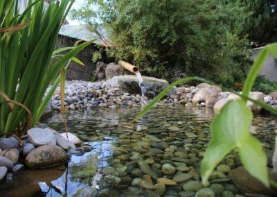 Etangs | Bassins | Pièces d'eau