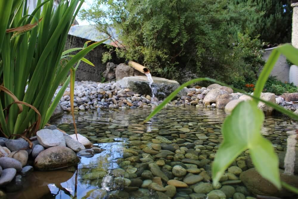 paysagiste etang plan eau piece bassin vert naturel piscine naturelle fontaine chute elligue mikael (1)(1)
