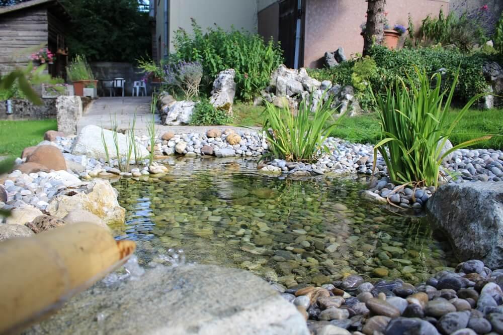 paysagiste etang plan eau piece bassin vert naturel piscine naturelle fontaine chute elligue mikael (2)(1)