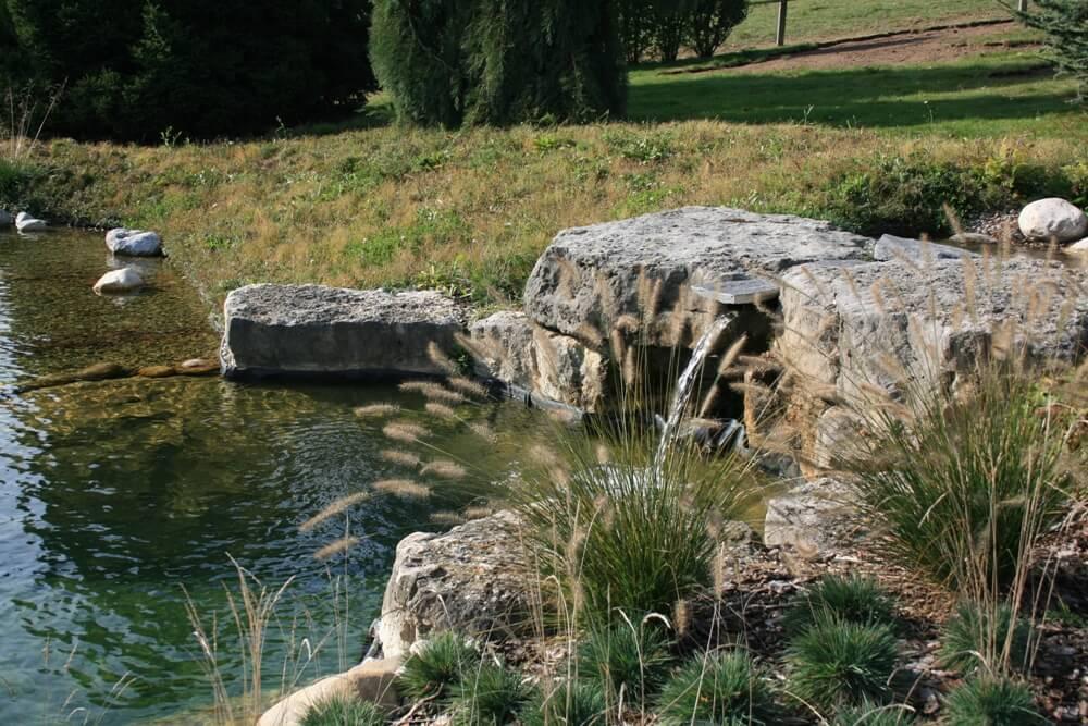 aellig paysages piscines naturelles koi poissons exterieur jura bernois camionettes vertes vert flash pet paysagiste (3)