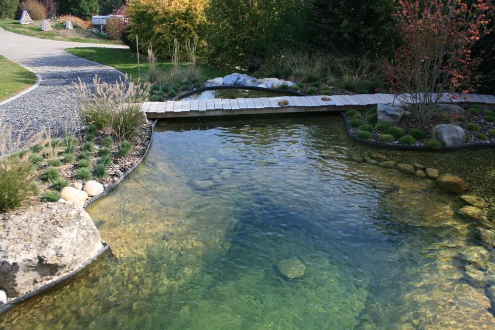 aellig paysages piscines naturelles koi poissons exterieur jura bernois camionettes vertes vert flash pet paysagiste (4)