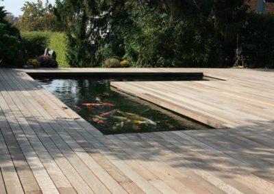 Piscines et piscines naturelles