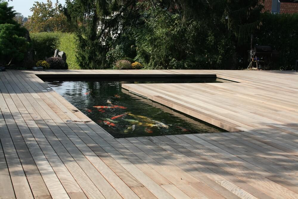aellig paysages piscines naturelles koi poissons exterieur jura bernois camionettes vertes vert flash pet paysagiste (8)